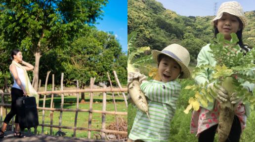 三重県の自然あふれる田舎の様子