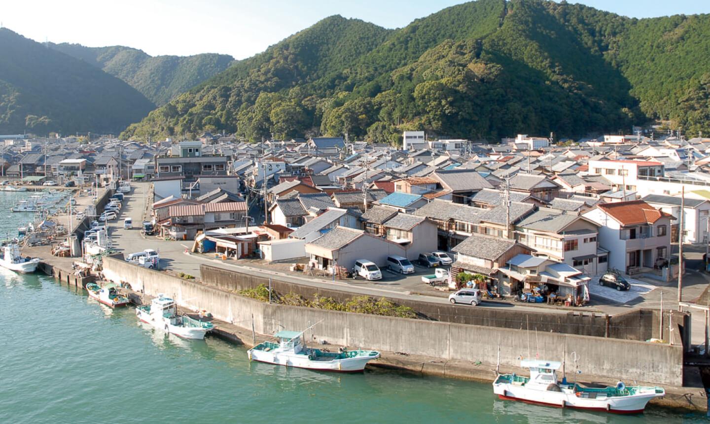 古道魚まち歩観会の写真